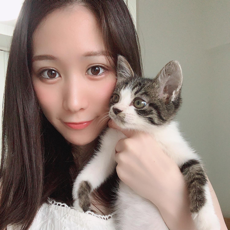 保護猫ちゃんを迎え入れました!♡( ˘ω˘ )♡_1