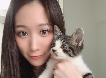 保護猫ちゃんを迎え入れました!♡( ˘ω˘ )♡