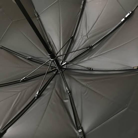 【サンバリア100】田中みな実さん愛用の日傘を購入♡_3