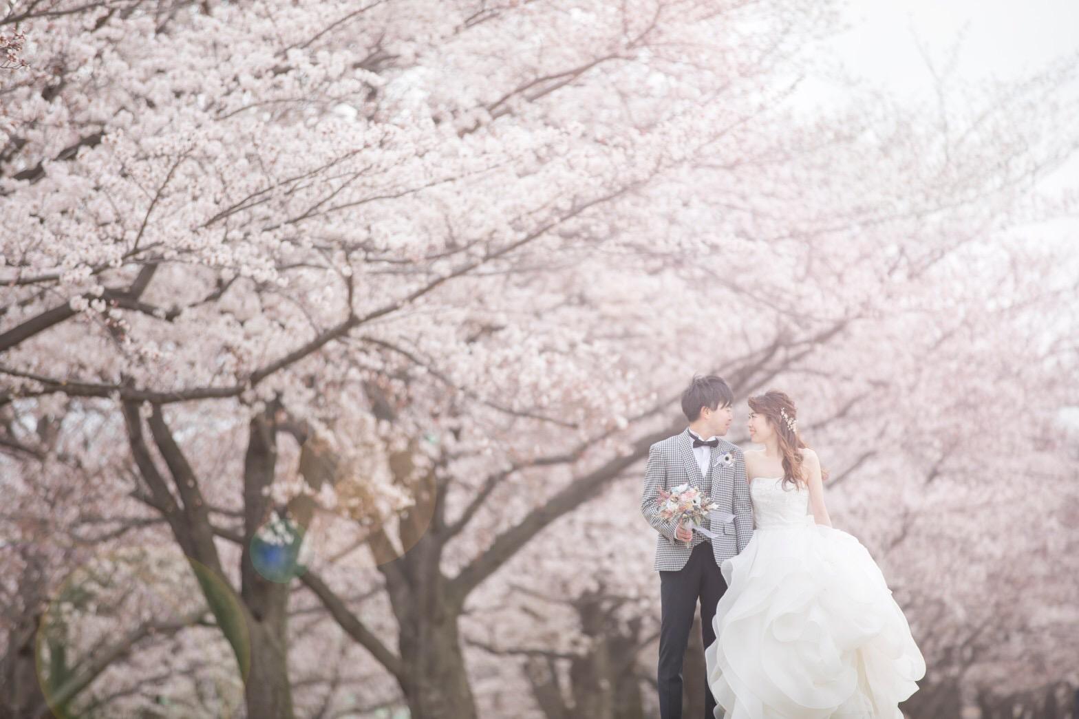 【桜ウェディング】桜満開の素敵なウェディングフォトを撮って頂きました♡_1
