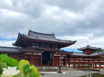 関西日帰りプラン《京都・宇治》世界遺産・平等院を巡る
