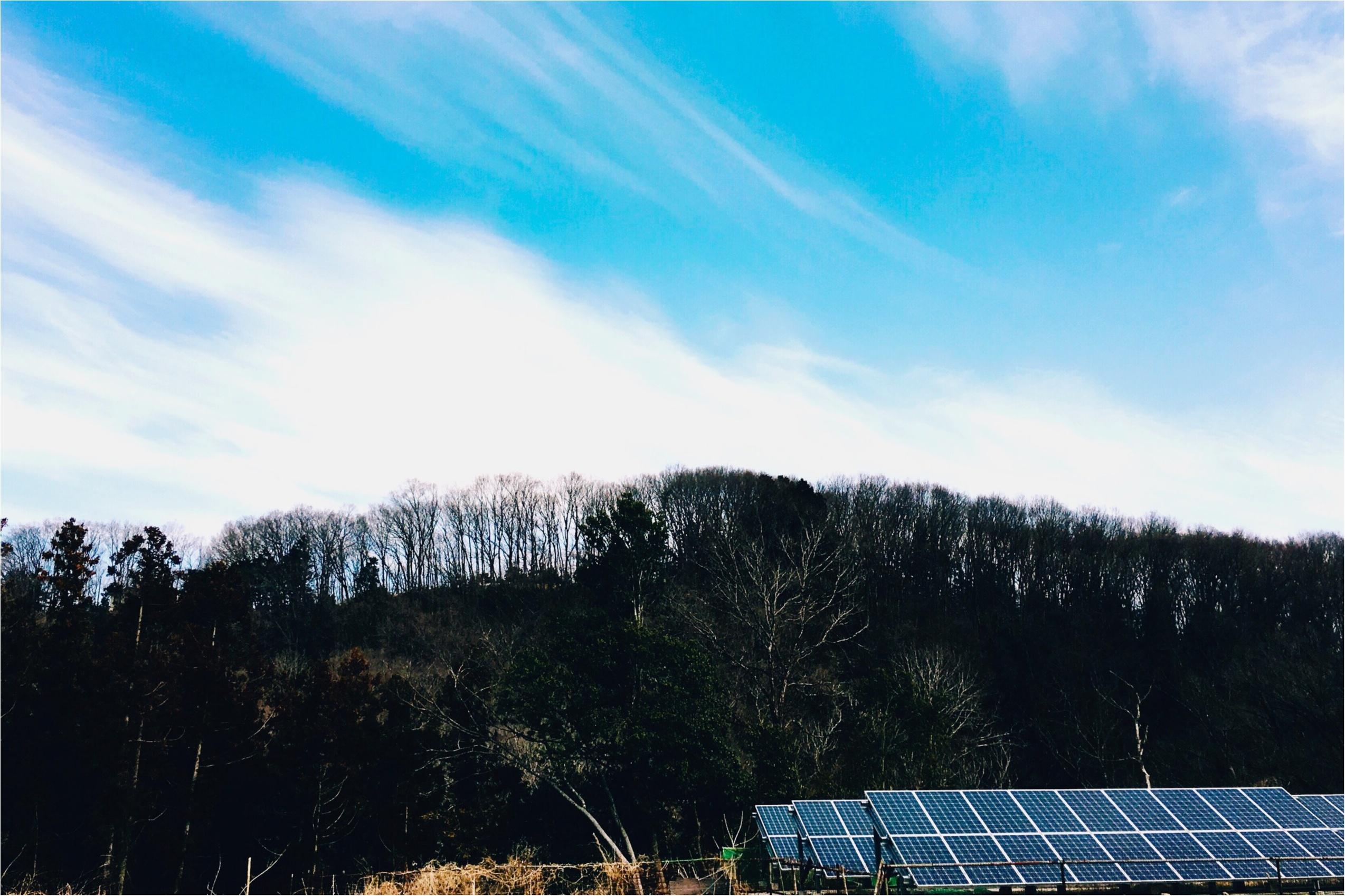春の週末旅*飯能にて農ある暮らしを見つめる旅【古民家編】♡_3