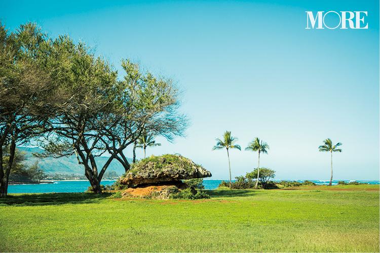 ハワイのおすすめスポット、グルメ、お土産etc. Photo Gallery_1_4