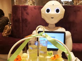 【渋谷】店員はロボット!ペッパー君との相席が楽しすぎる《Pepper PARLOR》