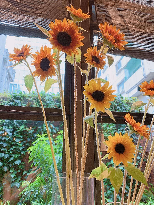 【おすすめカフェ】《季節のお花》に囲まれたしあわせ空間♡_2