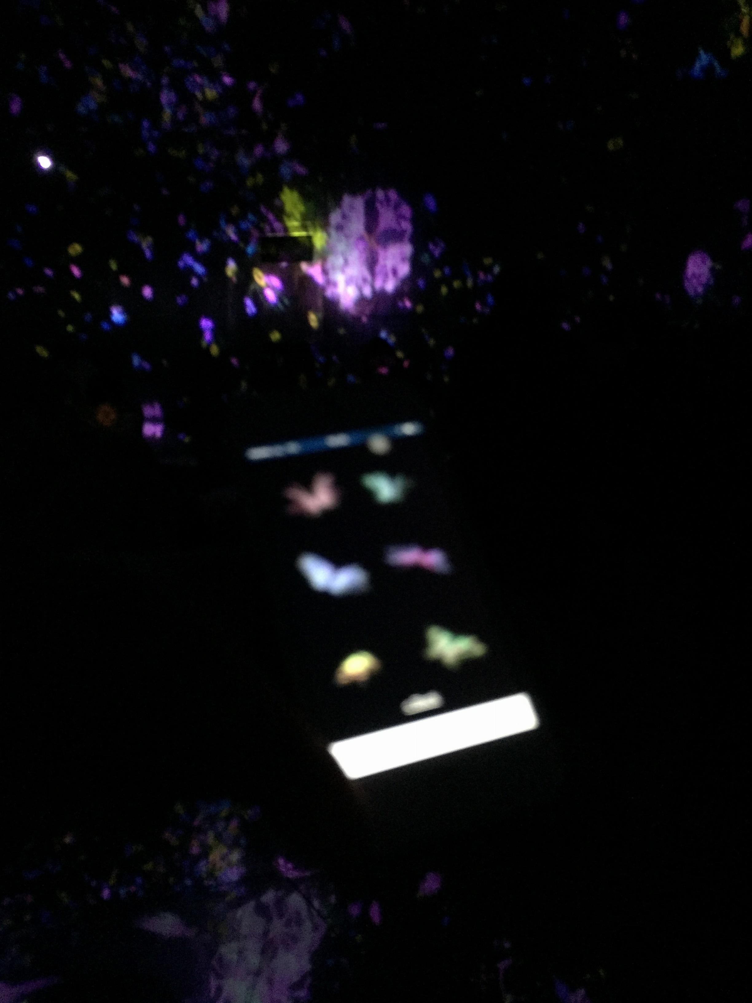 【夏のお出掛けスポット/DMM.プラネッツ Art by teamLab】水に浸かったり仰向けになったりして鑑賞する『デジタルアート』が幻想的✨8/31まで!お台場に急げ♩≪samenyan≫_19