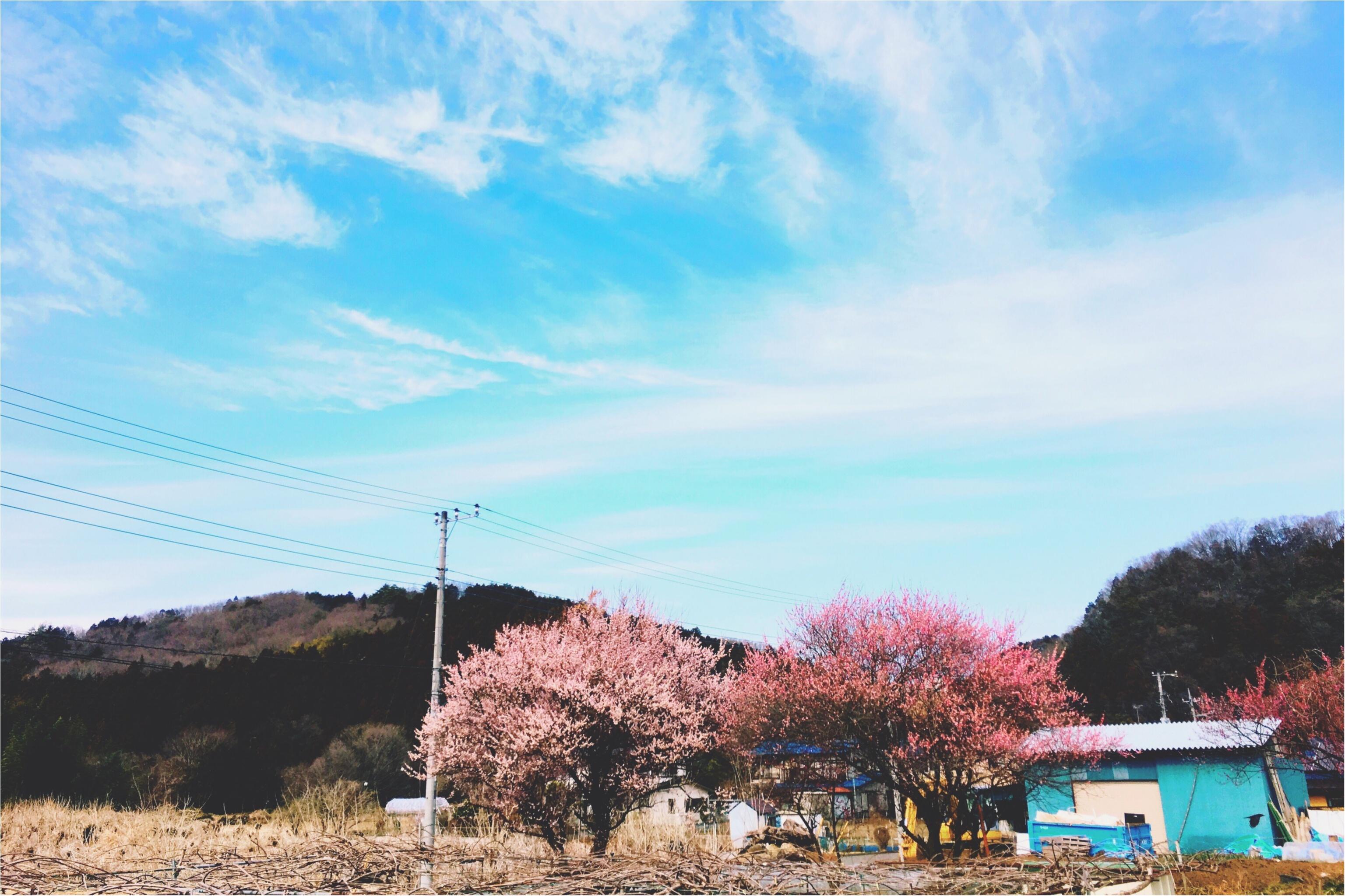 春の週末旅*飯能にて農ある暮らしを見つめる旅【古民家編】♡_1