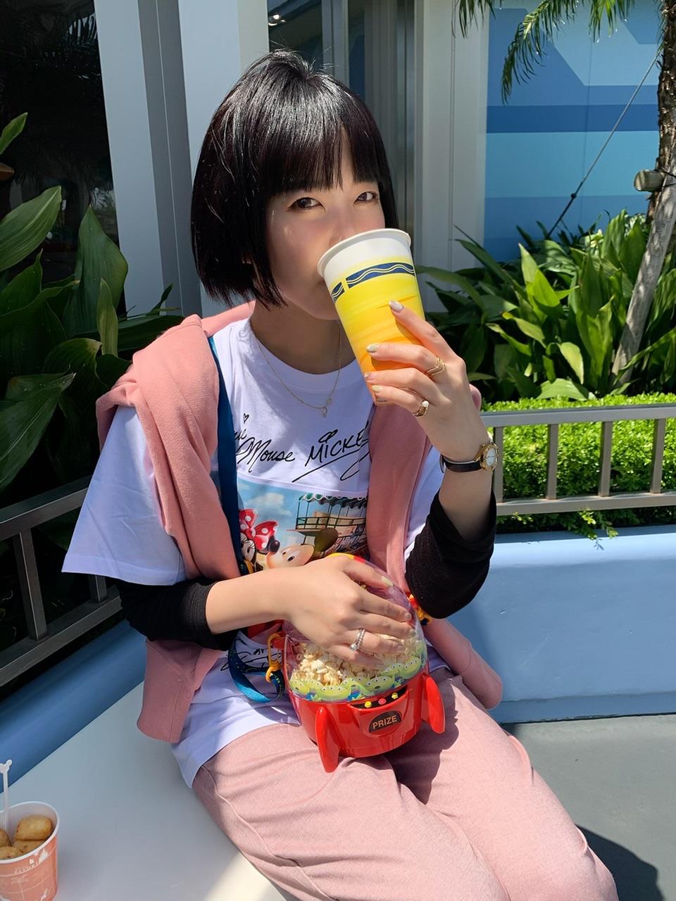 【東京ディズニーランドでもお酒が飲める!】宣言明けに絶対楽しみたい!_1