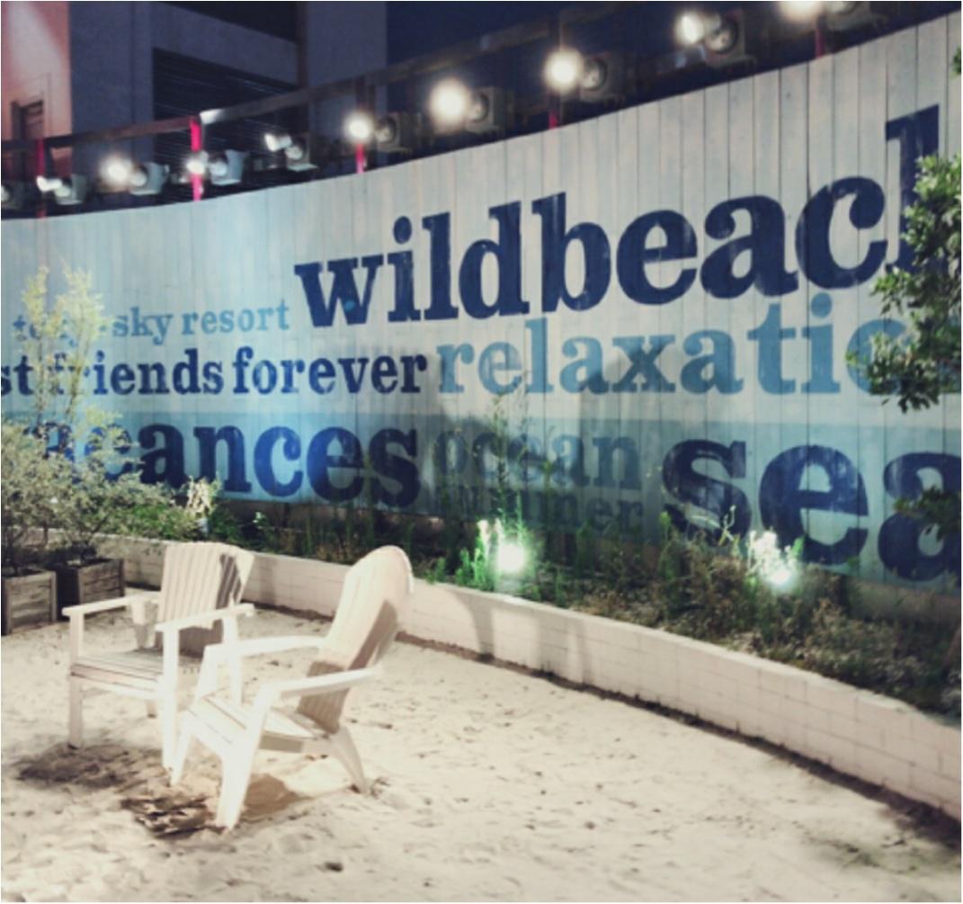 《東京のまんなかでBBQ!!》インスタ映えスポットもたくさん♡【WILD BEACH】_5