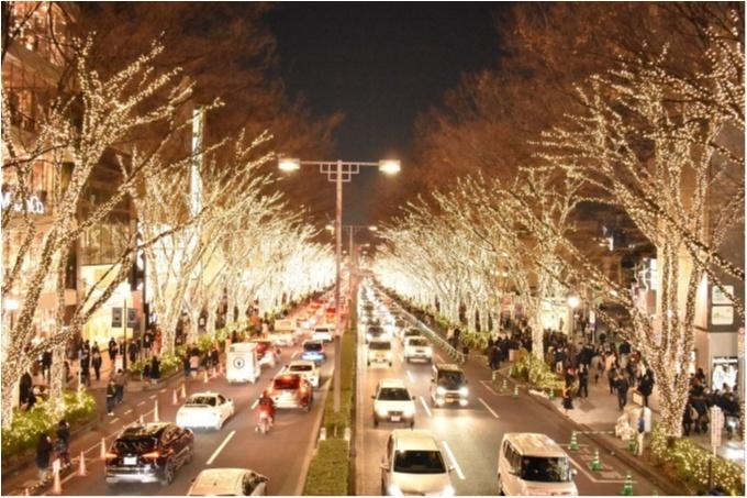 東京都内のおすすめイルミネーション、表参道、恵比寿、お台場etc.11選☆彡_7