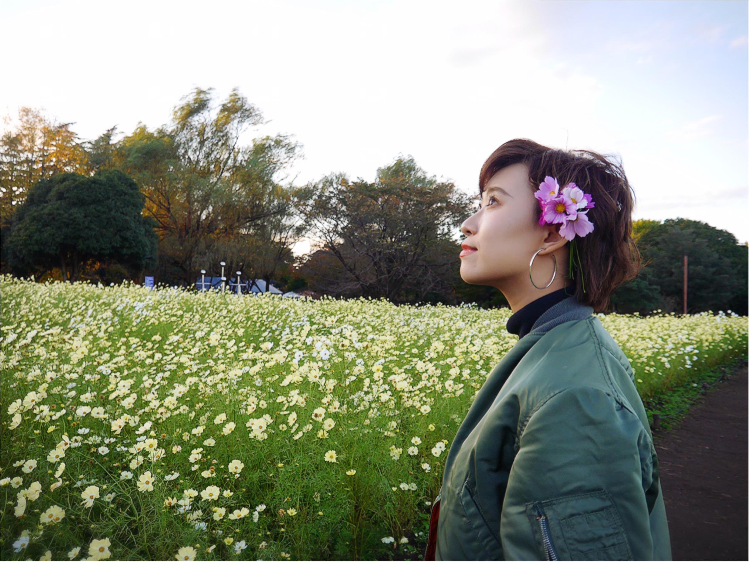 ★晴れた日は、カメラを持って昭和記念公園へ☺︎my camera は『LUMIX』!!_10