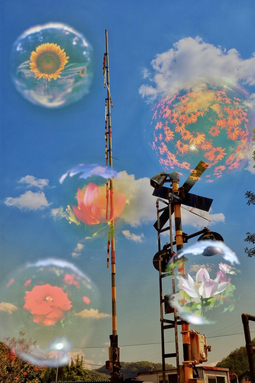 青空の写真に、ガラス玉に映った数枚の花の写真を合成したもの