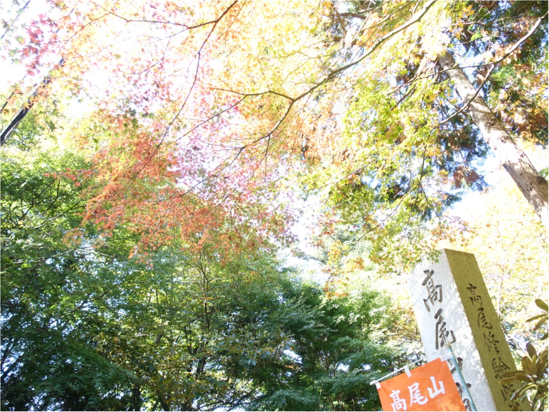 《日帰りデート》気軽に行ける高尾山で秋を満喫!彼とのリンクコーデは【UNIQLO】のあのアイテム❤️_2