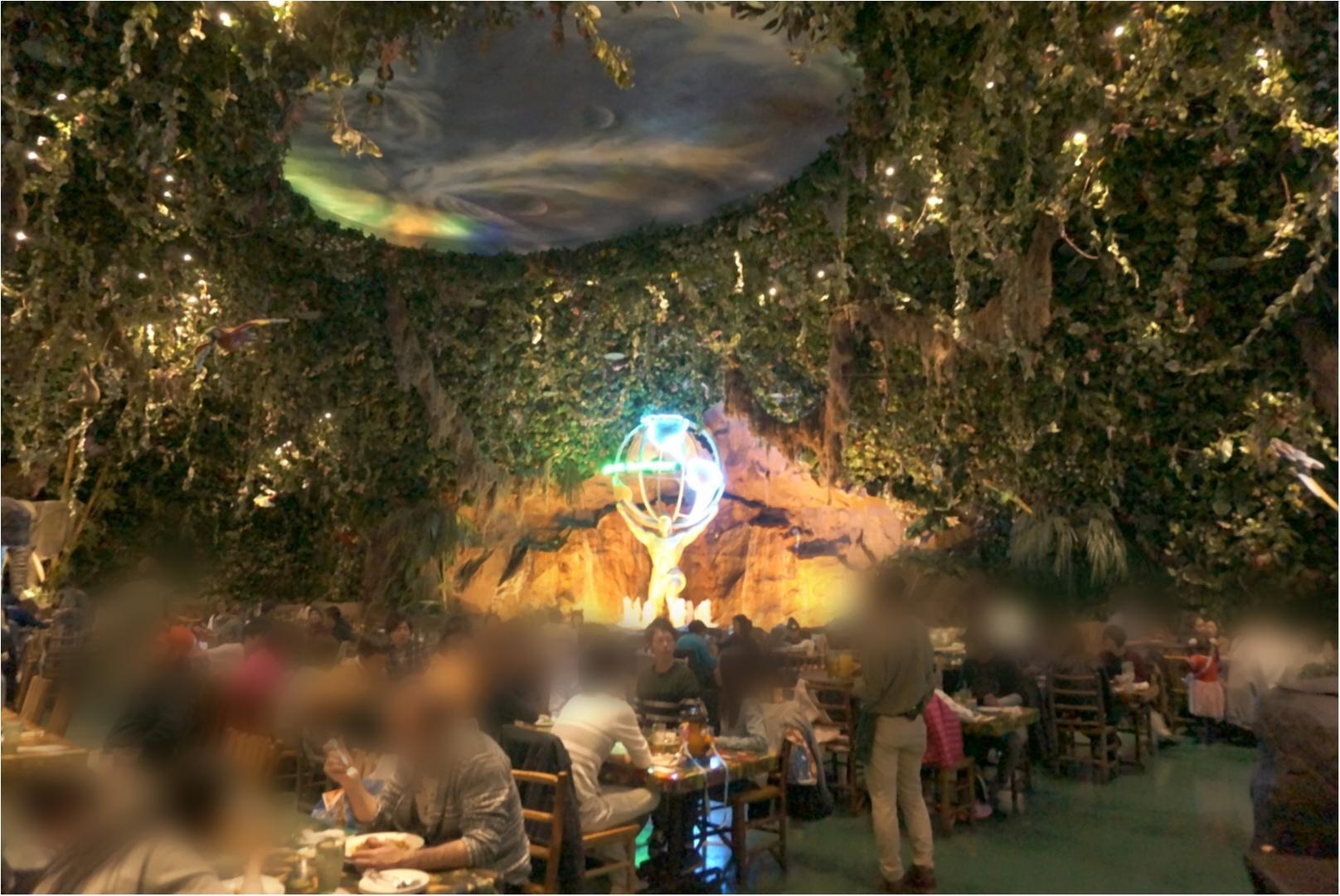 """まるで """" ジャングル """" みたい‼︎熱帯雨林と野生動物の保護をテーマにしたレストランが凄い✨ここでサプライズバースデーはいかが(*´∀`*)?_3"""