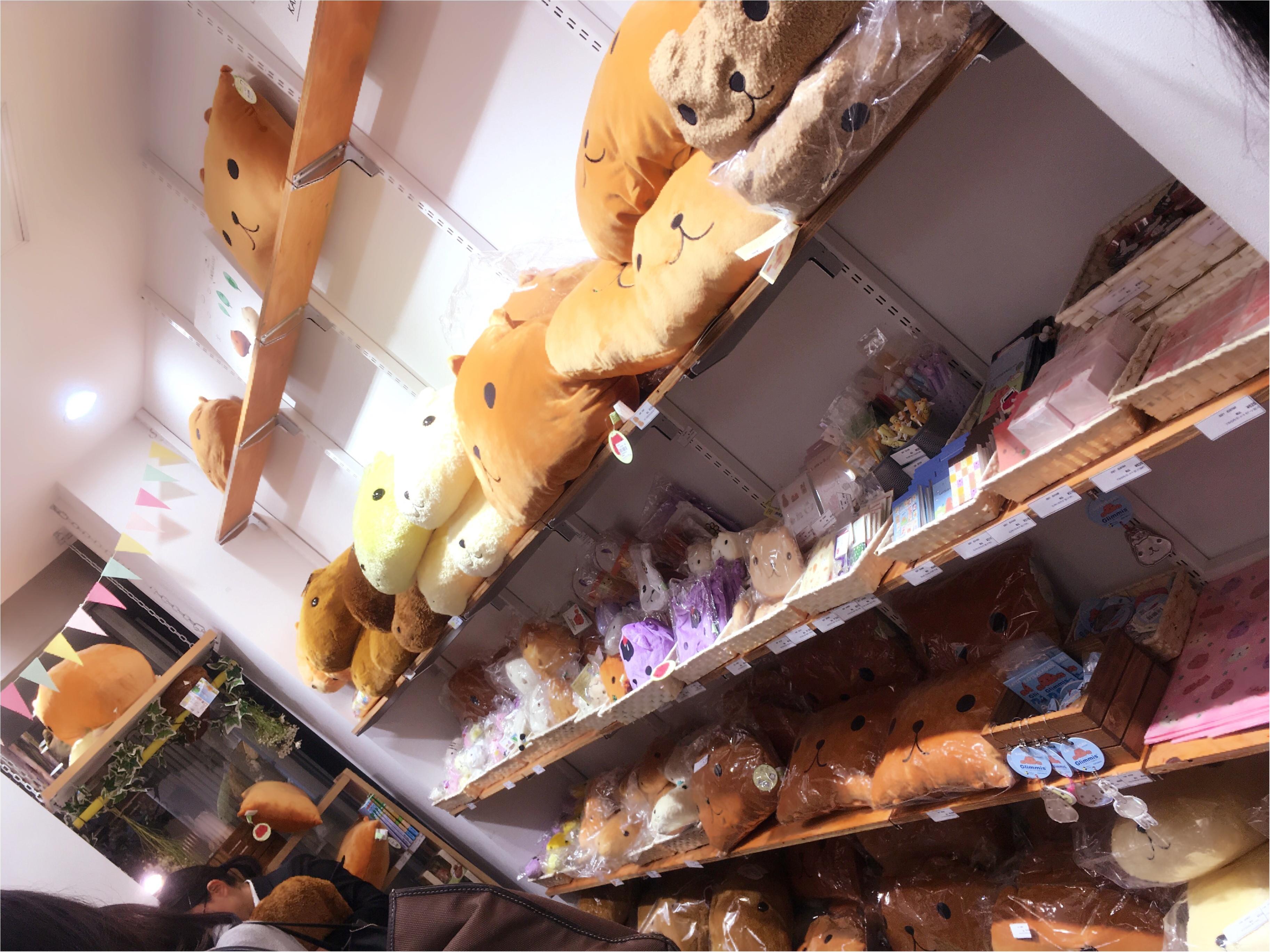 around27歳の私たちも…♡新宿ミロード出店中の「大人カピバラさん」に大注目♡_3