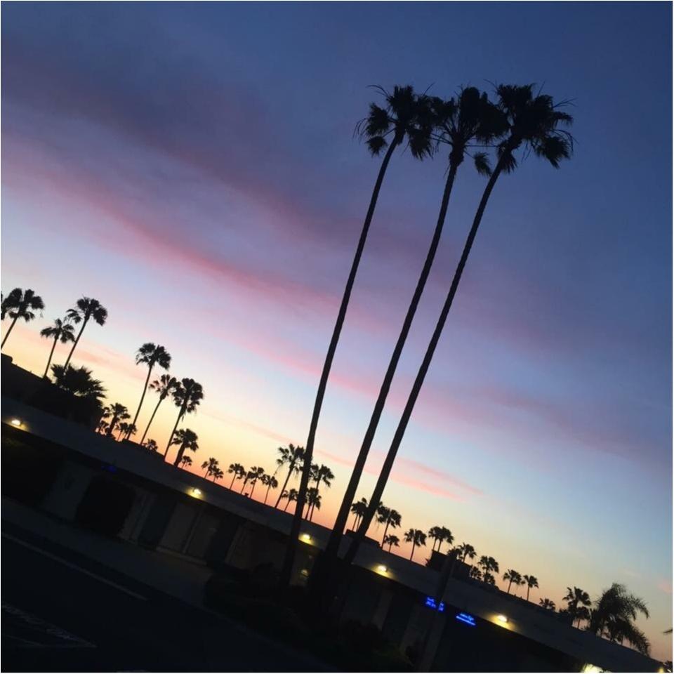 写真でも、きっと伝わるこの魅力✨朝から晩まで眺めた《*ロサンゼルスの広い空*》_10