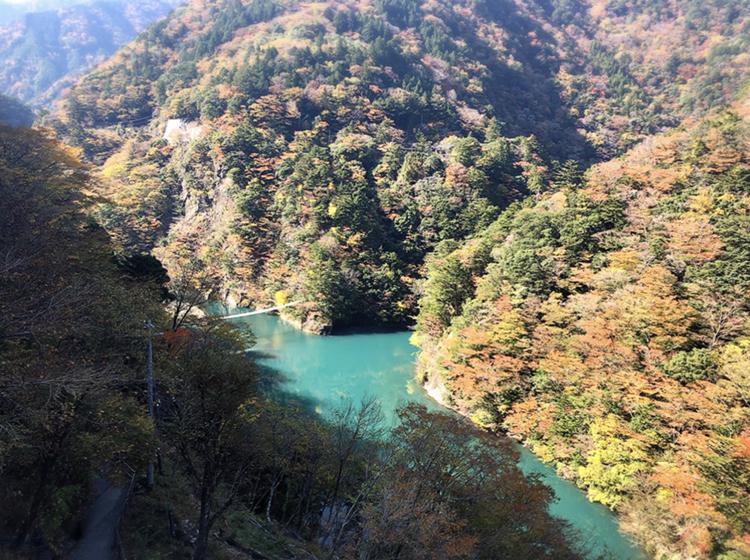【#静岡】《夢の吊り橋×秋・紅葉》美しすぎるミルキーブルーの湖と紅葉のコントラストにうっとり♡湖上の吊り橋で空中散歩気分˚✧₊_4