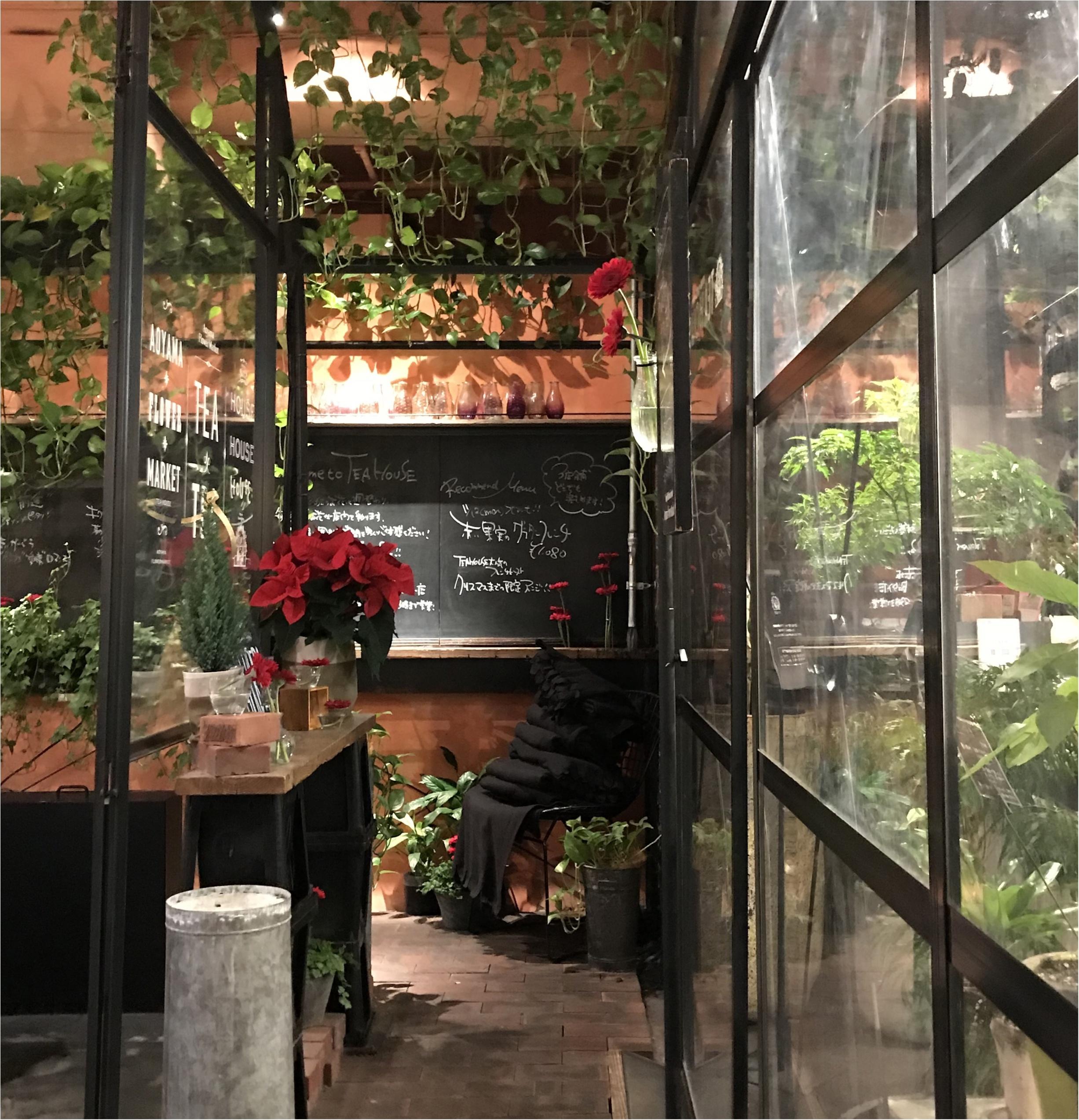 【FOOD】~Aoyama Flower Market~お花に囲まれて食べるご飯は格別♡季節ごとに何回でも行きたくなる素敵なカフェ♡今のお花は?_2