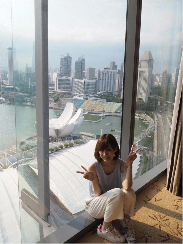 今年の休みはシンガポールへ!シンガポールおすすめスポット3選☆_11