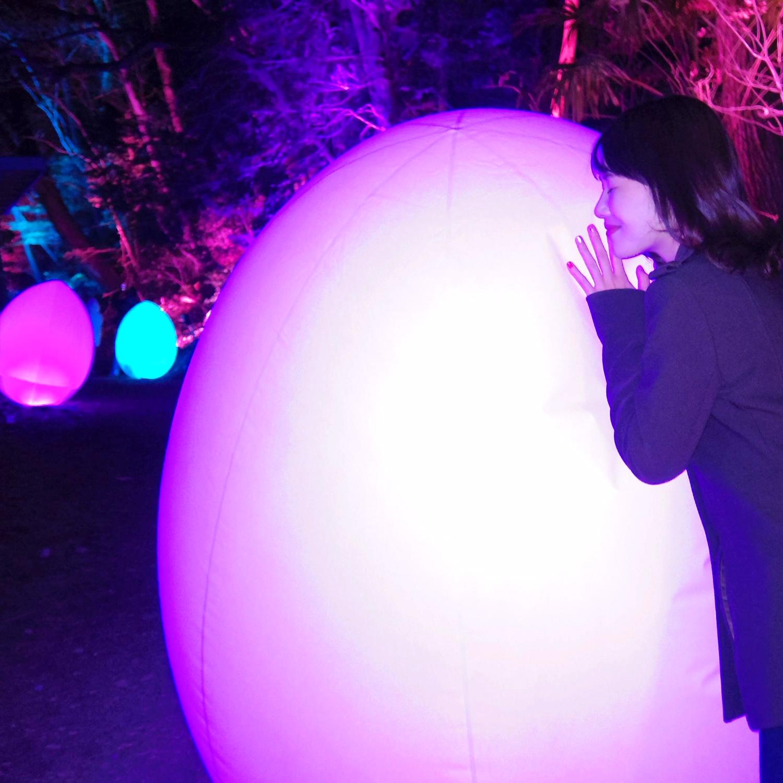 【3月3日(日)まで】埼玉県・飯能市のチームラボに行ってきました!_5