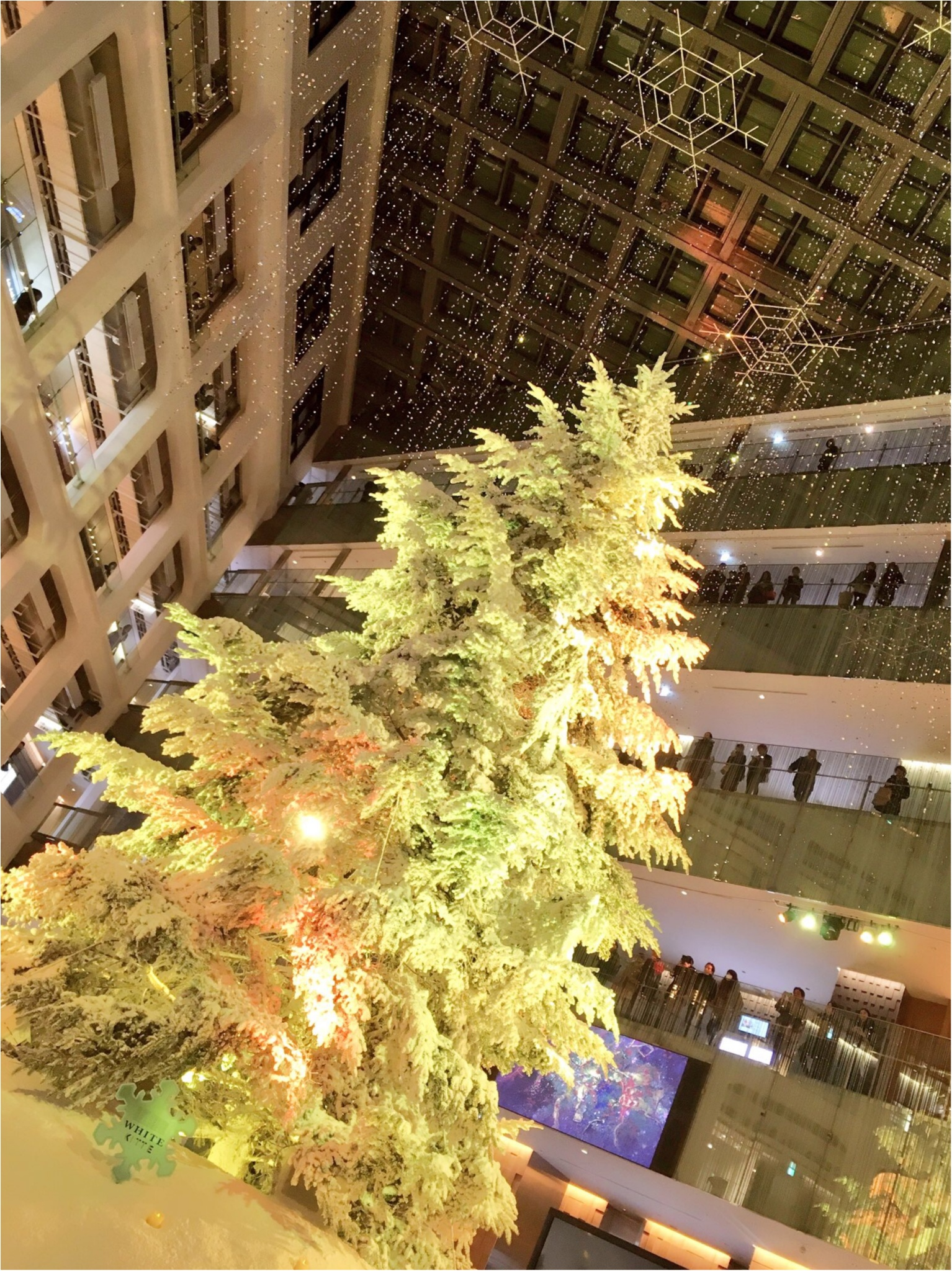 『KITTE』屋内に広がる白銀の世界…!日本最大級、本物のモミの木のクリスマスツリーが今年も点灯(*´ ˘ `*)♡_5