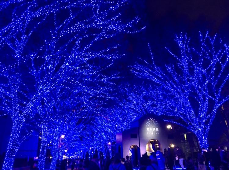 \渋谷イルミ/青の洞窟 SHIBUYA♡_4