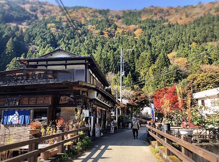 【#静岡】《夢の吊り橋×秋・紅葉》美しすぎるミルキーブルーの湖と紅葉のコントラストにうっとり♡湖上の吊り橋で空中散歩気分˚✧₊_3