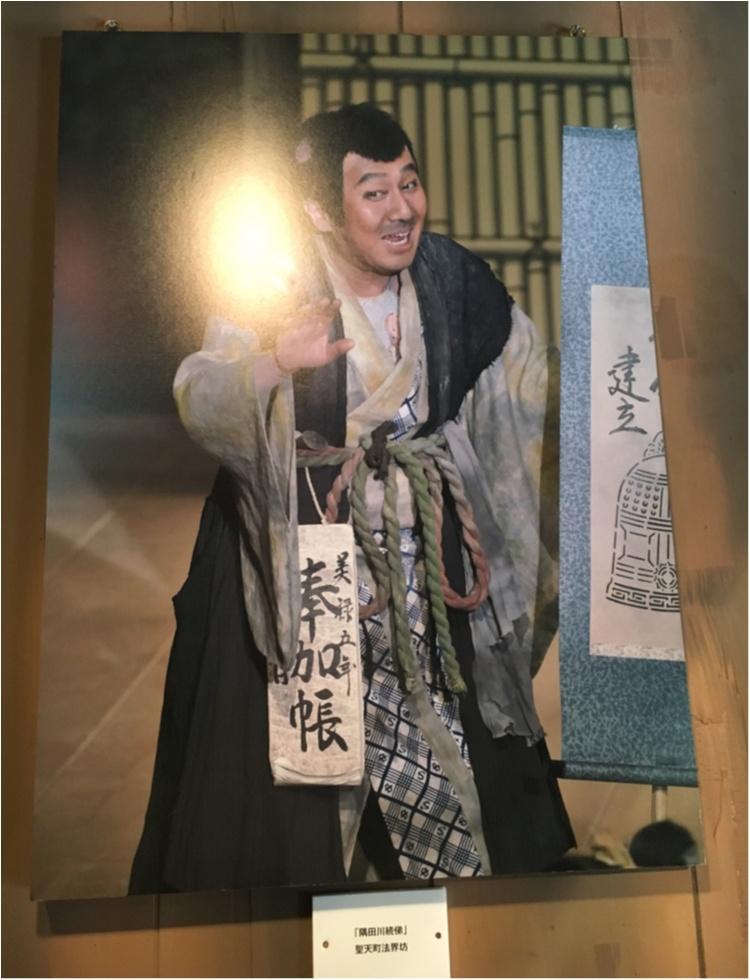 【歌舞伎のススメ其の3】平成最後の《平成中村座》!!江戸の芝居小屋を体感する♡_5