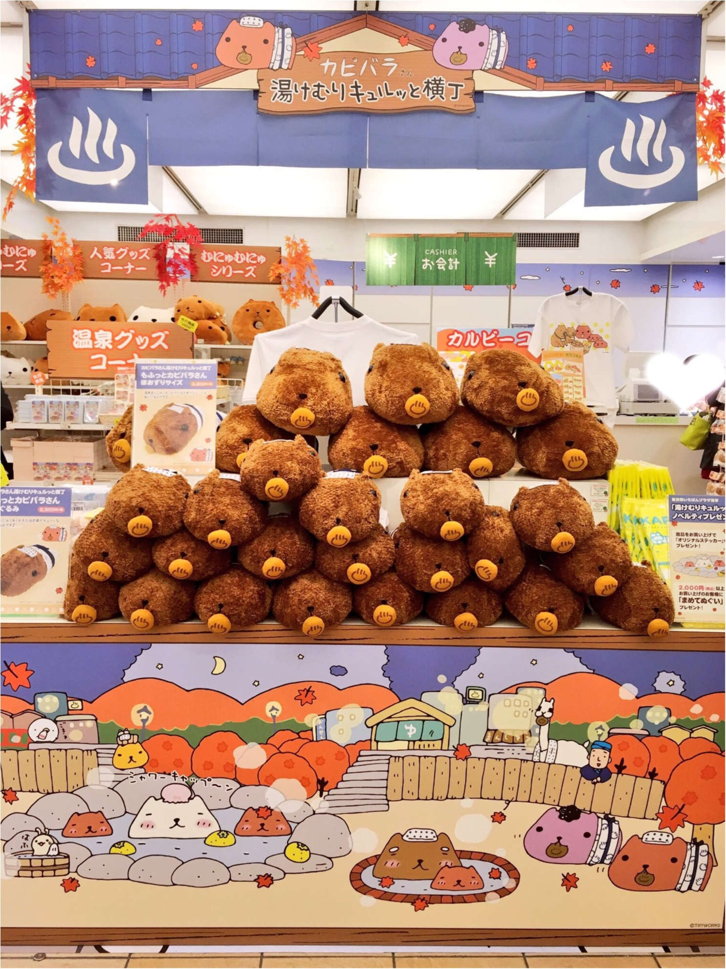 『カピバラさん×東京駅』作者チダケイコ先生サイン会&Calbeeプラスに行ってきました(*´ ˘ `*)♡_5