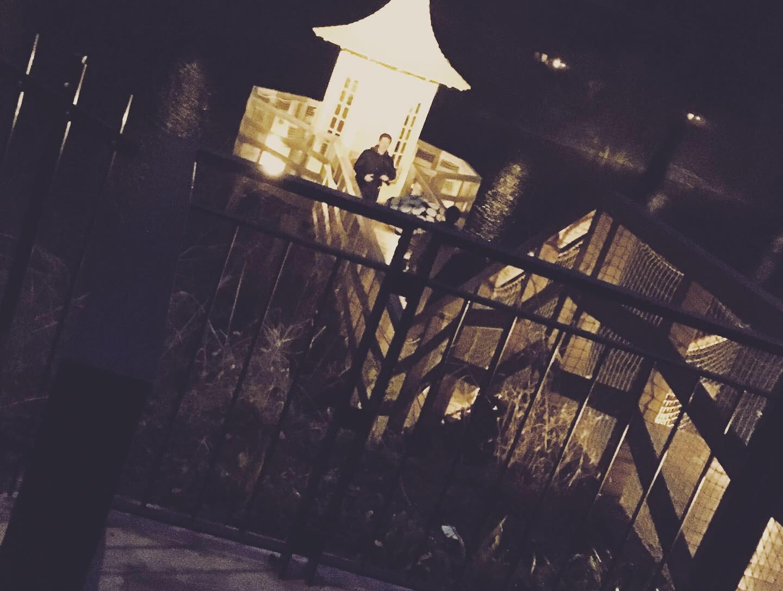 【埼玉県飯能市】で北欧✳︎ムーミンの世界を体験!<<ムーミンバレーパーク>>_10