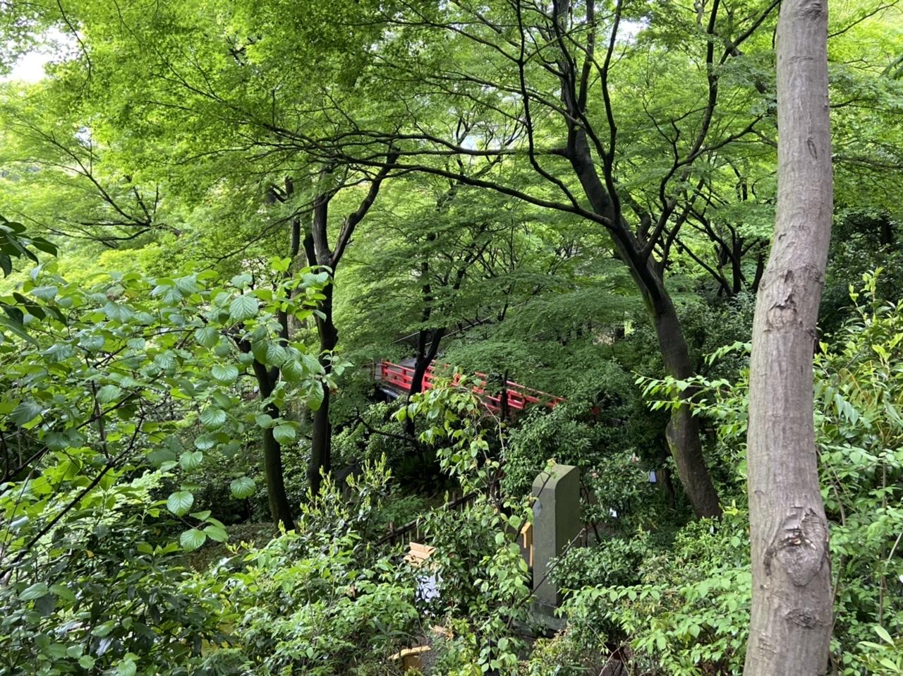 《椿山荘の宇治茶アフタヌーンティー》に行ってきました!_5