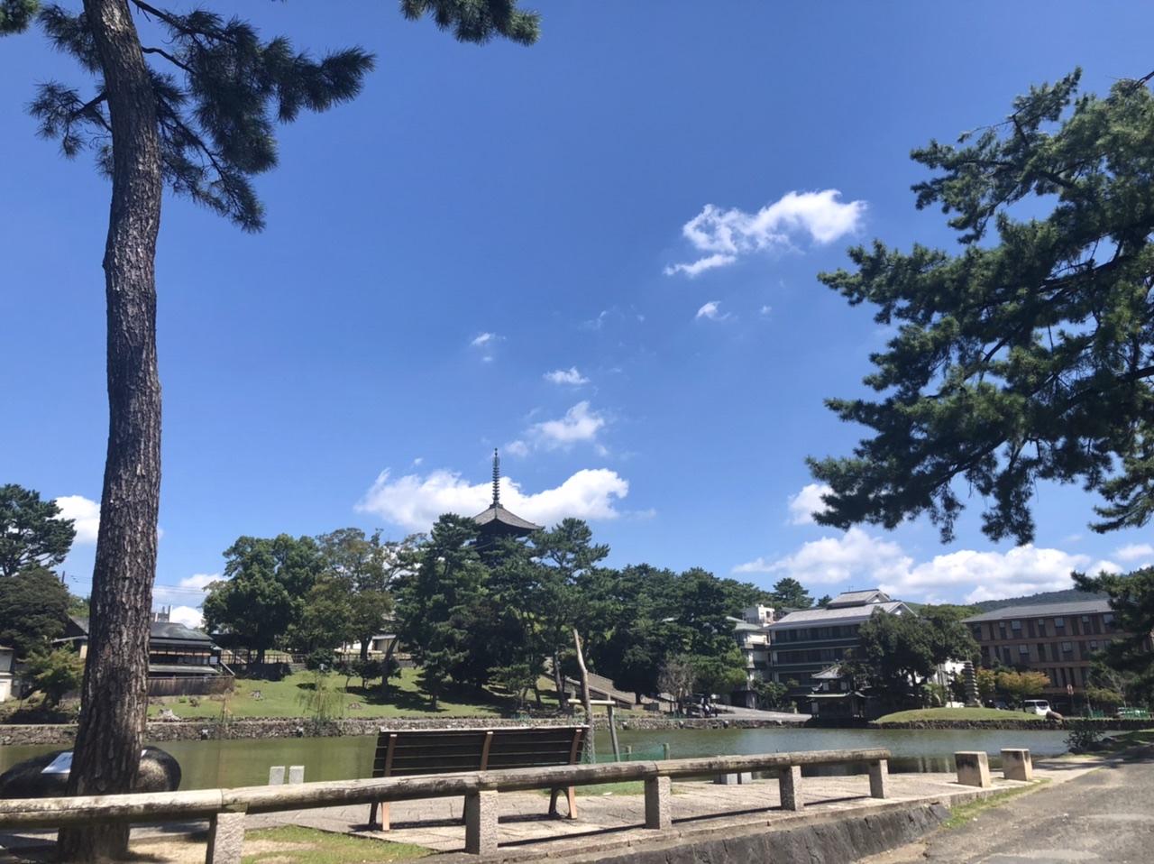 奈良市興福寺と猿沢池の写真