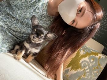 【我が家のペット】愛犬まるちゃんお誕生日を迎えました!