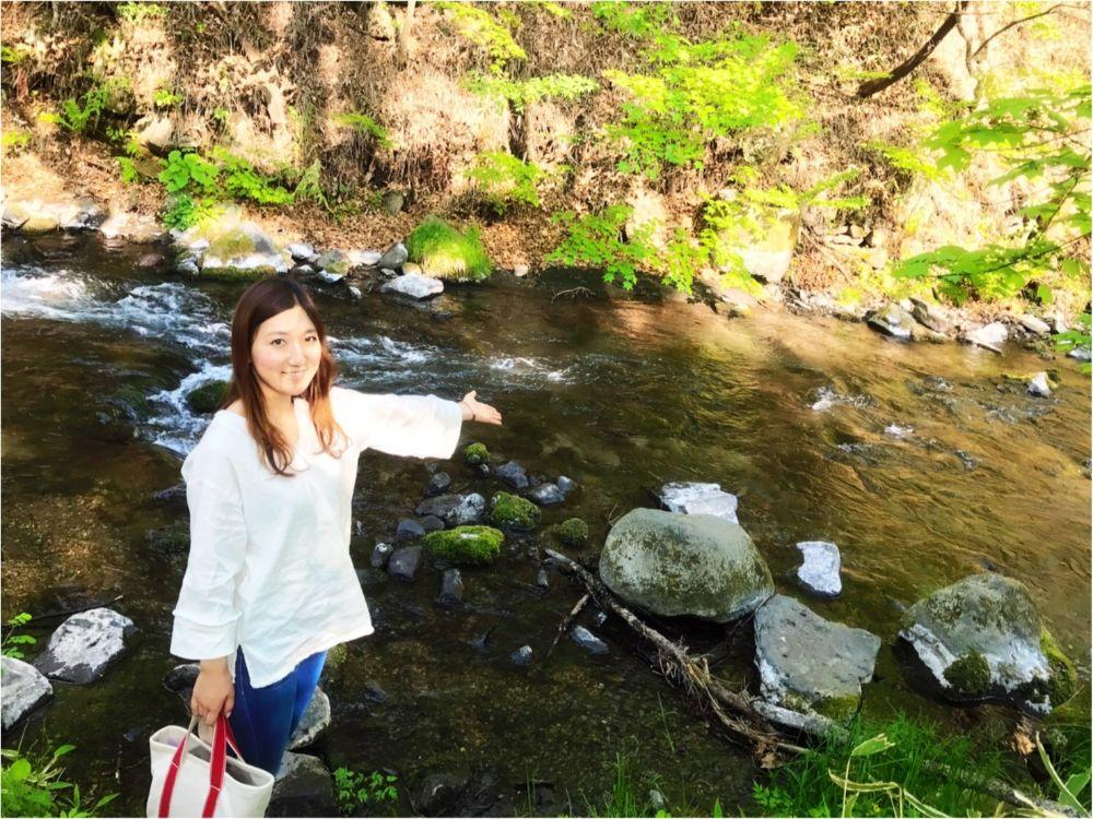 軽井沢女子旅特集 - 日帰り旅行も! 自然を満喫できるモデルコースやおすすめグルメ、人気の星野リゾートまとめ_9