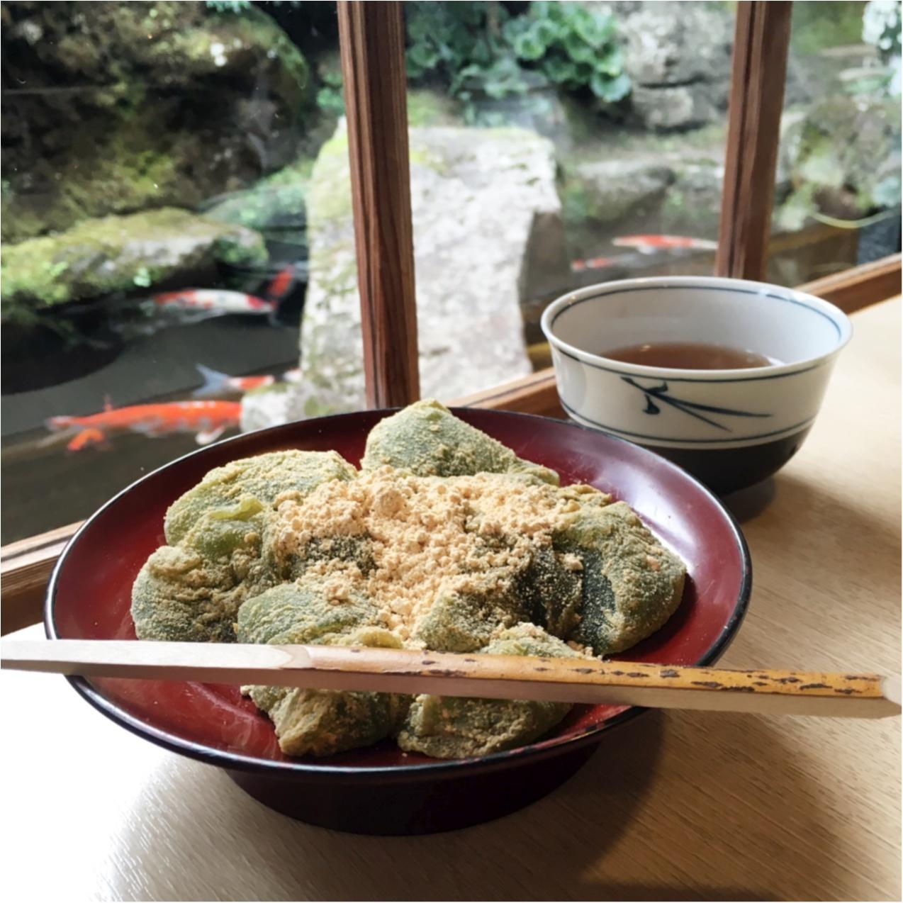 プルプルとろける食感♡ 京都で人気の《 草わらびもち 》はいかがですか?_5
