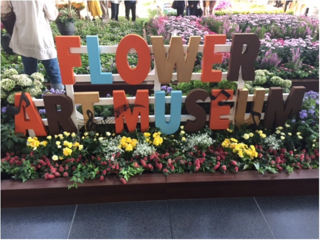 大阪駅がお花でいっぱいに!フラワー アート ミュージアム 2017_1