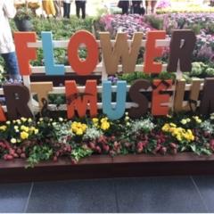 大阪駅がお花でいっぱいに!フラワー アート ミュージアム 2017