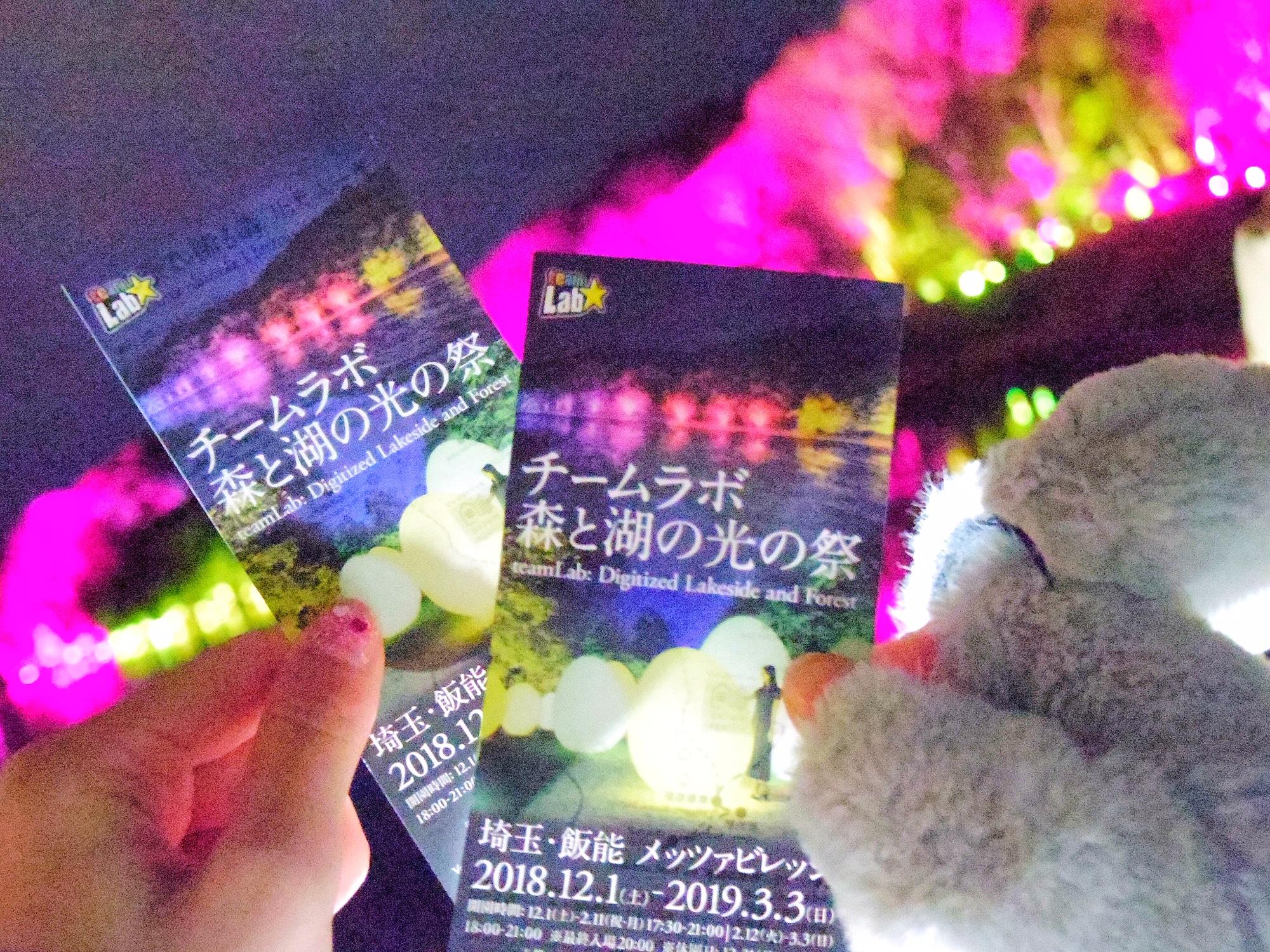 【3月3日(日)まで】埼玉県・飯能市のチームラボに行ってきました!_1