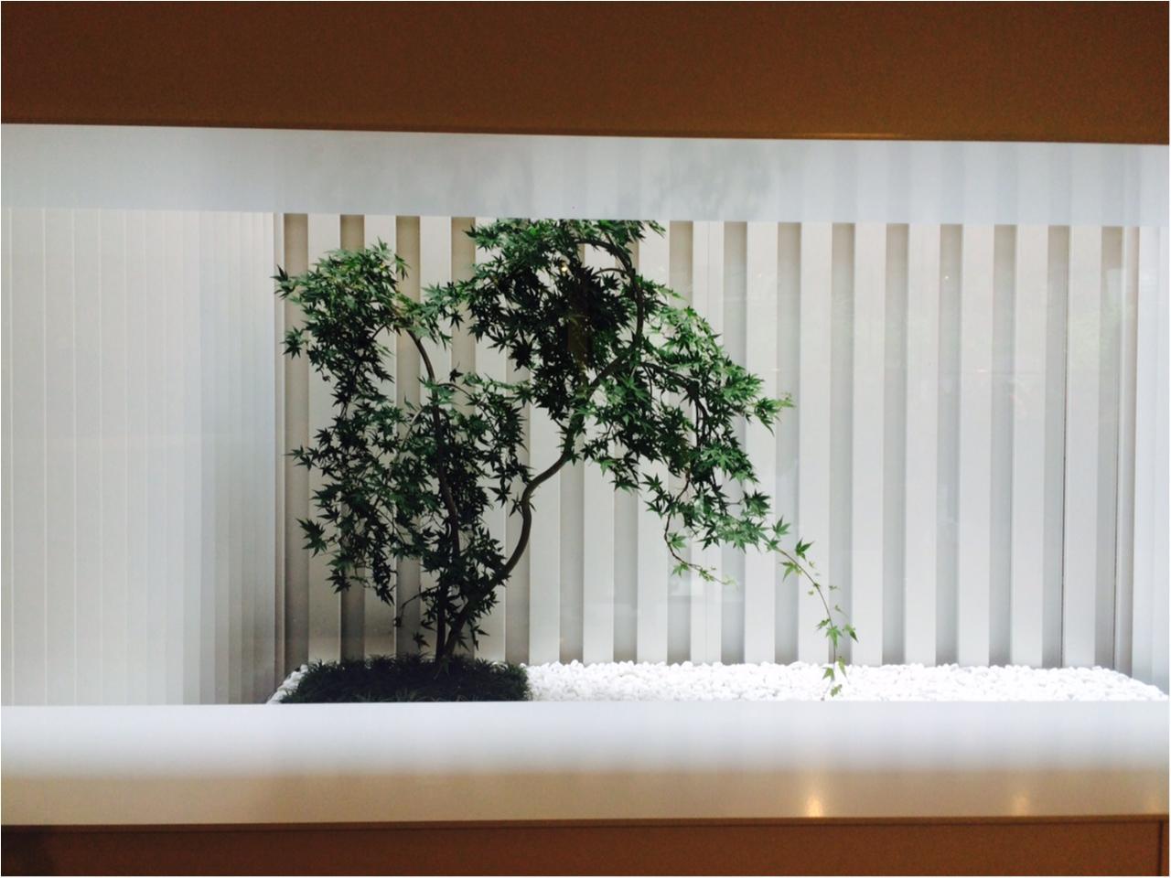 そこは大人の隠れ家だった……! 『YOKO CHAN』の新店舗に潜入!_4