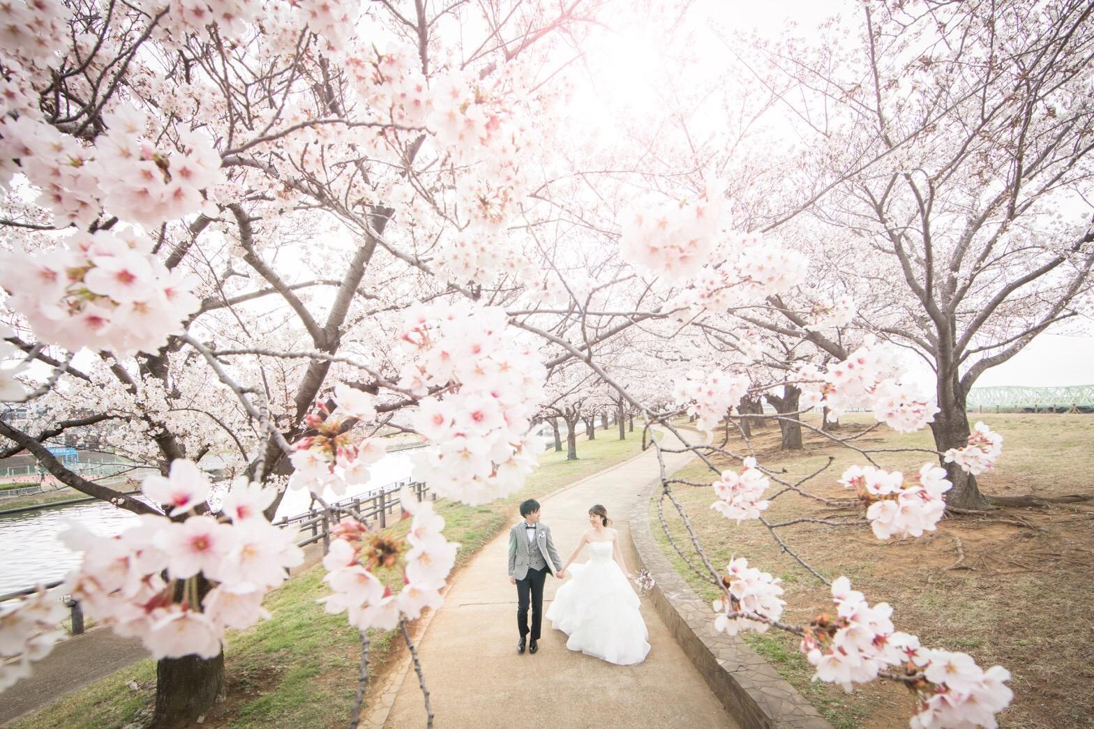 【桜ウェディング】桜満開の素敵なウェディングフォトを撮って頂きました♡_5
