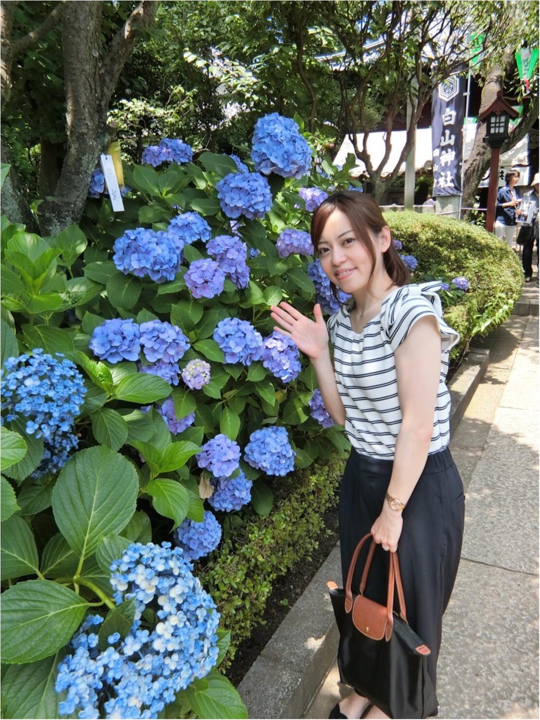 【今が見頃!】6月のおでかけは紫陽花まつりがおすすめ*写真映えするコーデのポイントも♡_6