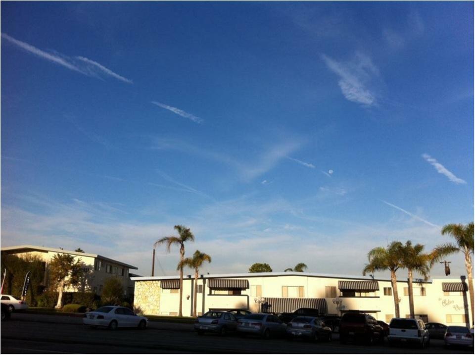 写真でも、きっと伝わるこの魅力✨朝から晩まで眺めた《*ロサンゼルスの広い空*》_5