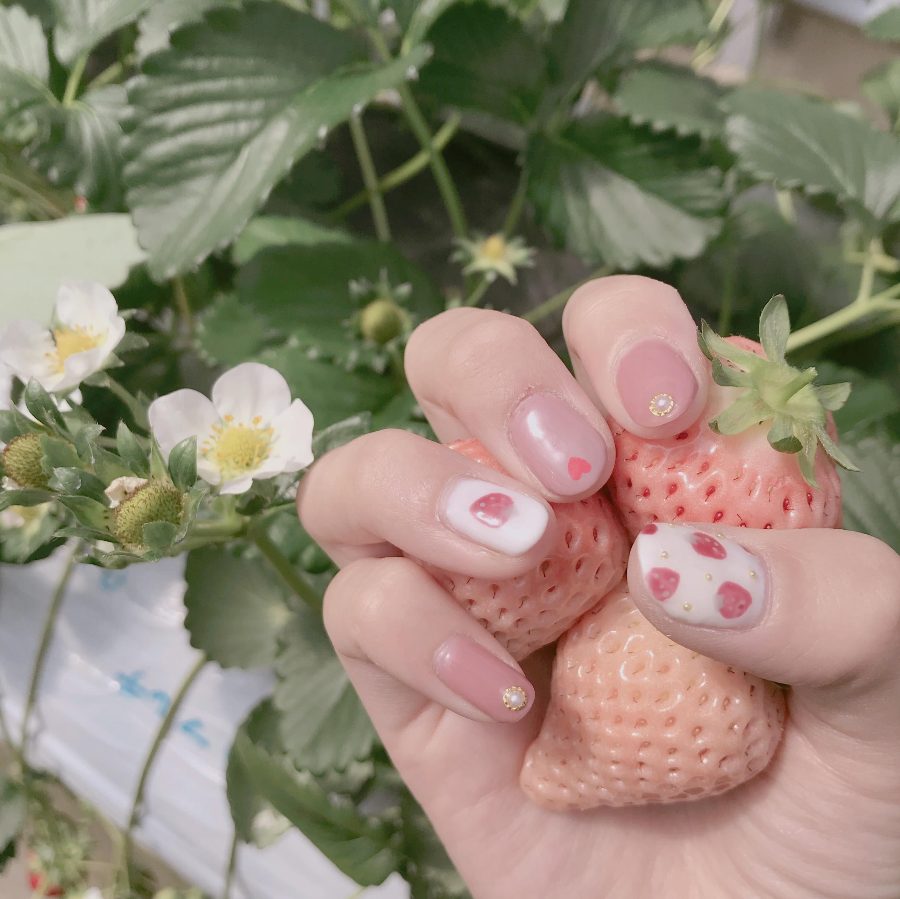 春といえば【いちご狩り】なんと、白イチゴが食べ放題のいちご園があるんです❤︎_1