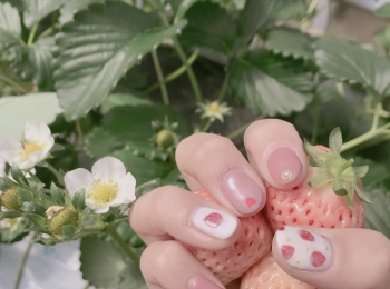 春といえば【いちご狩り】なんと、白イチゴが食べ放題のいちご園があるんです❤︎