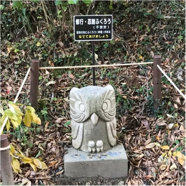 【パワースポット】栃木県の鷲子山神社へ運気アップに行ってきました♪《メディアで話題のフクロウ神社》_7_2