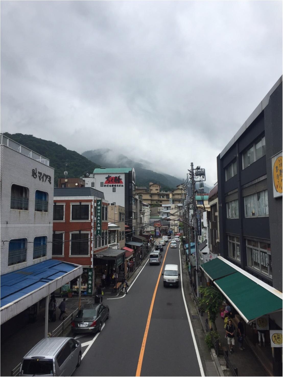 【箱根旅】箱根湯本駅から徒歩1分❤︎アートなお蕎麦屋さんで腹ごしらえ☺︎_2