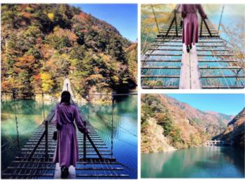 【#静岡】《夢の吊り橋×秋・紅葉》美しすぎるミルキーブルーの湖と紅葉のコントラストにうっとり♡湖上の吊り橋で空中散歩気分˚✧₊