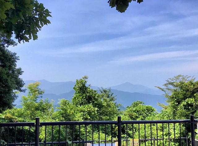 【休日の過ごし方】Go to 高尾山〜小学生ぶりに山登りしてみました〜_5