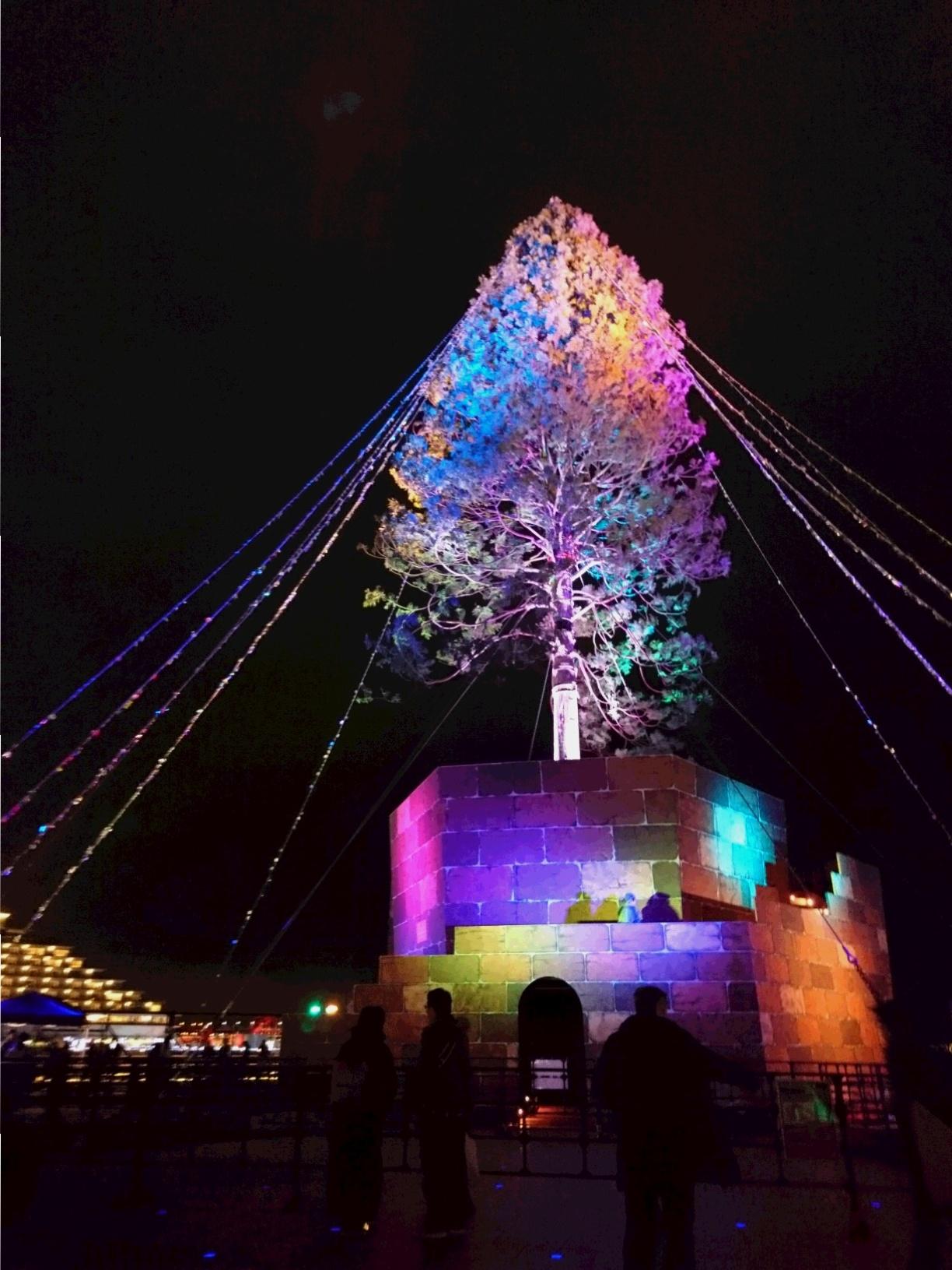 兵庫県は今、神戸がホットスポット☆ 開港150周年&世界一のクリスマスツリー ☆_5