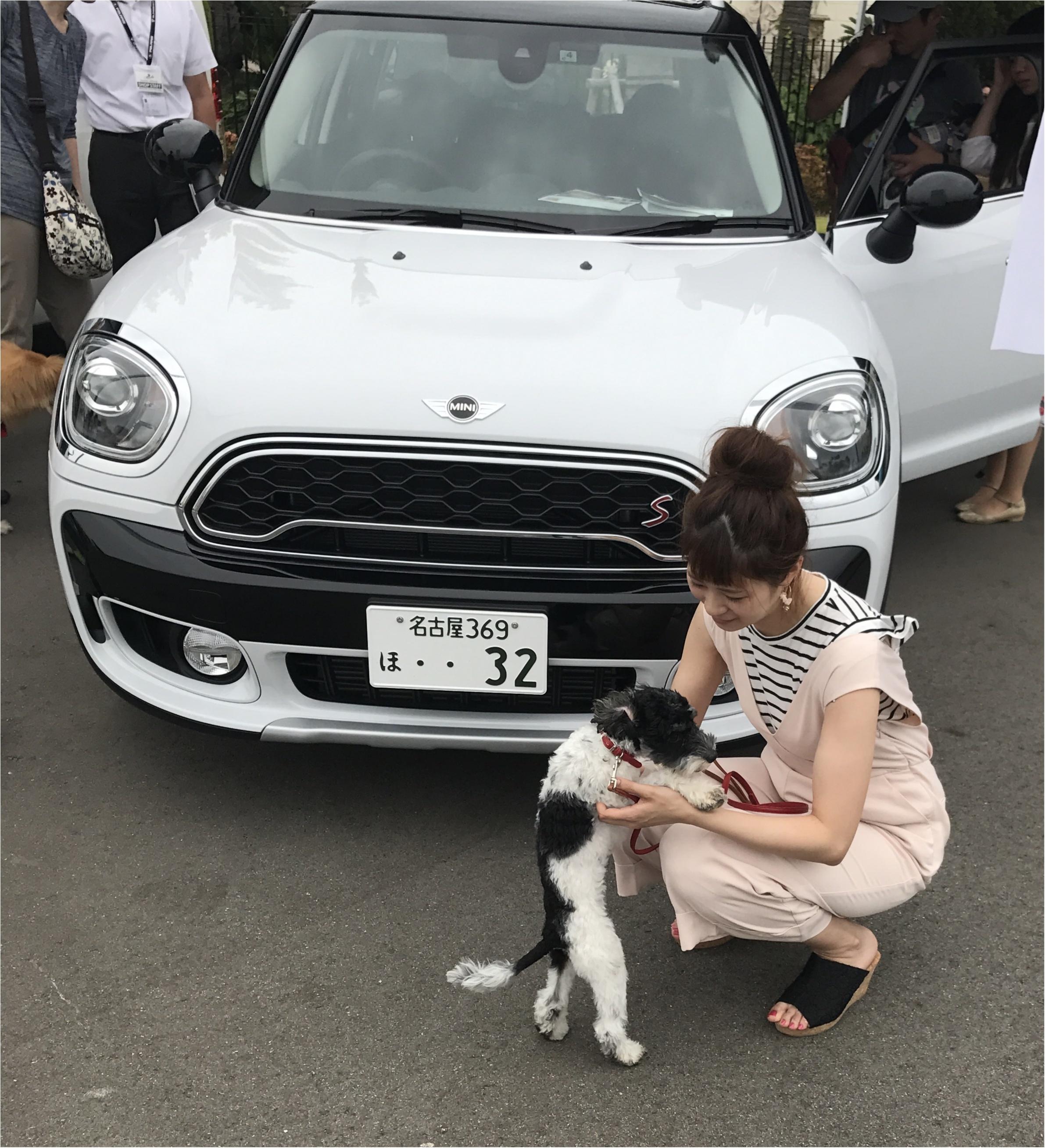 【コーデ】きれいめカジュアルコーデで愛犬とわんこマルシェへ♡_3